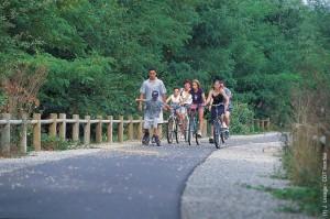 Vélo en Vendée