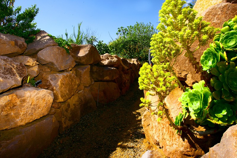 Focus des villes tapes du tour de france nice la for Jardin botanique nice